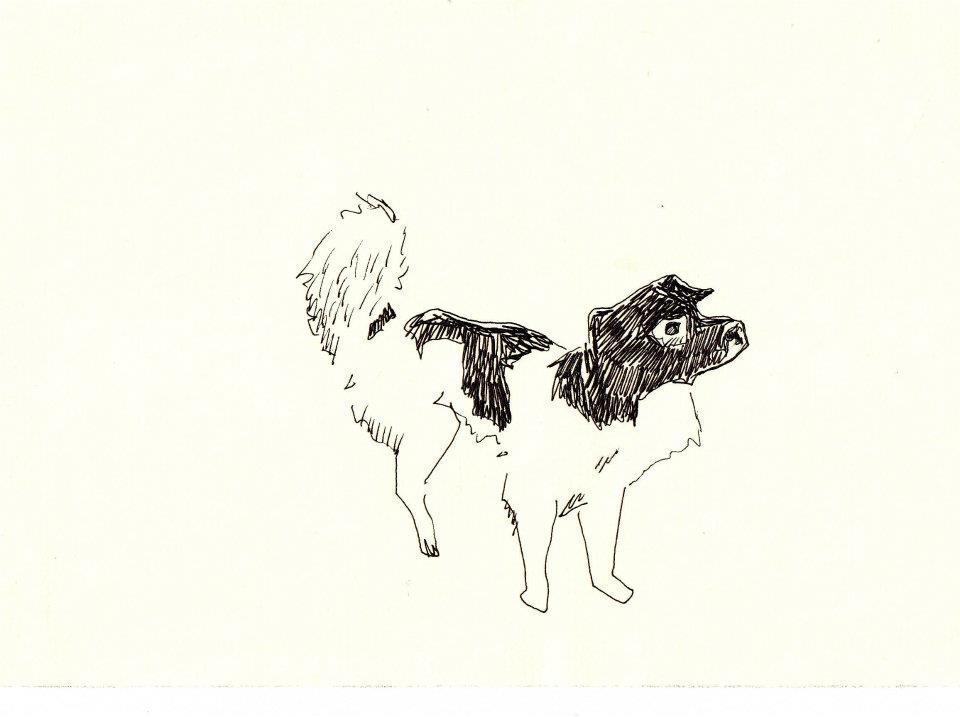 drawings (193)