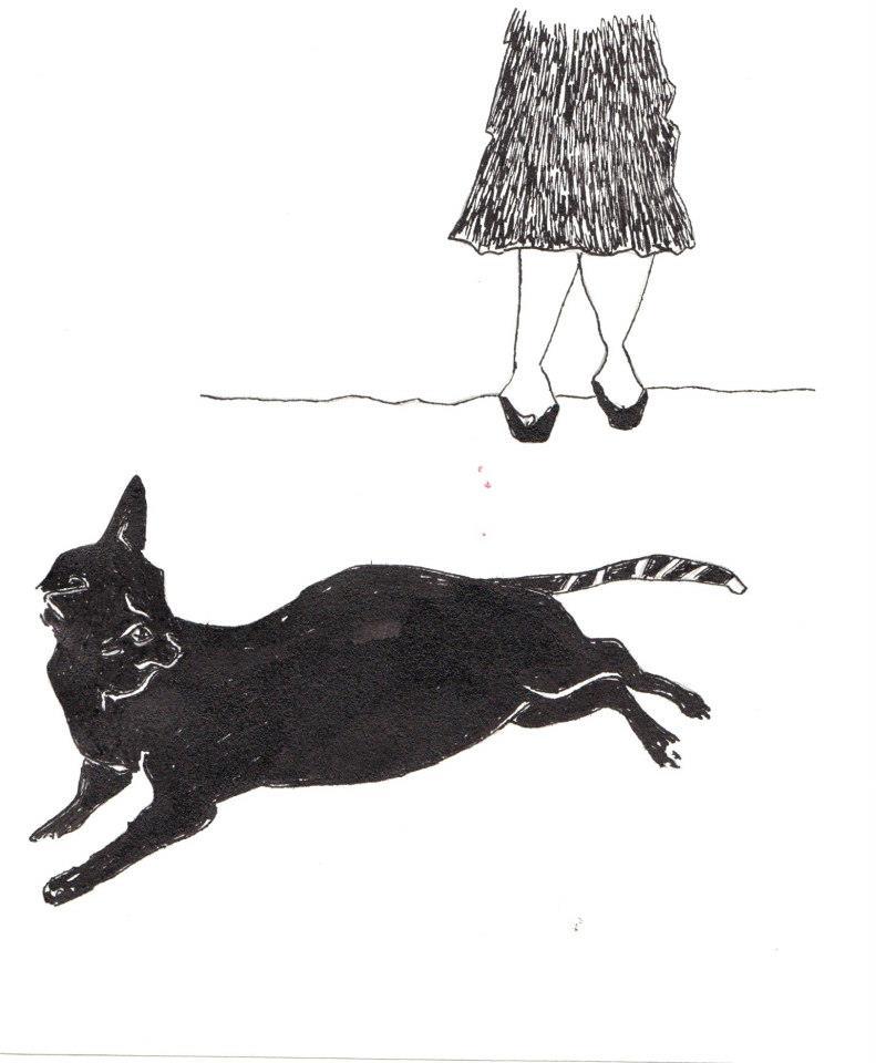 drawings (217)