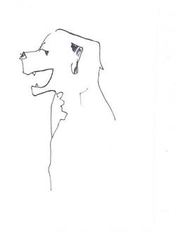 drawings (189)