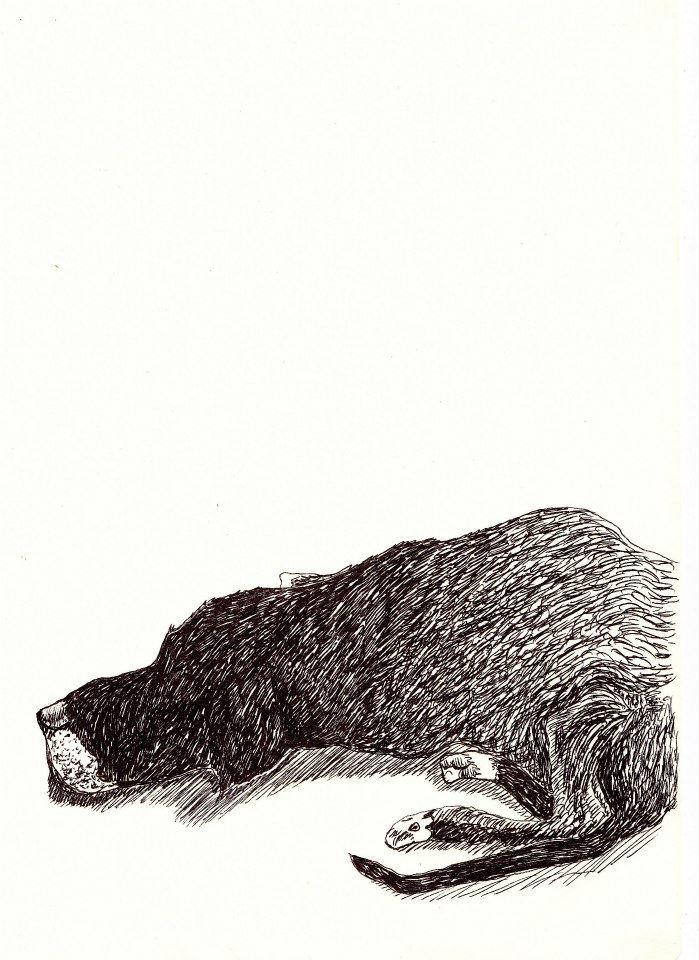 drawings (225)