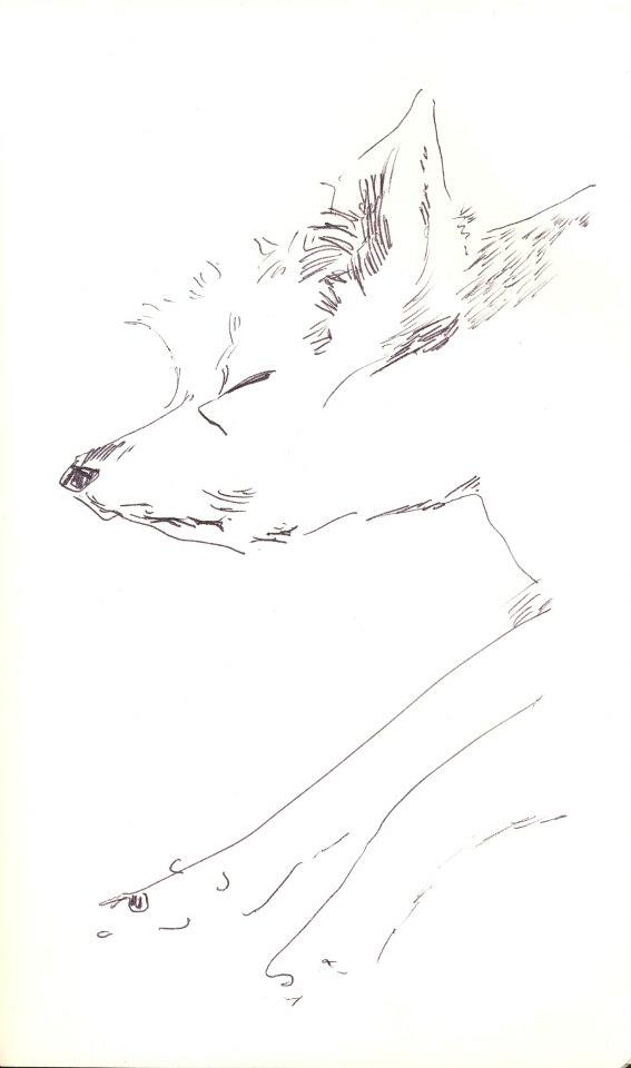 drawings (53)