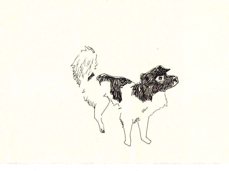 drawings (232)