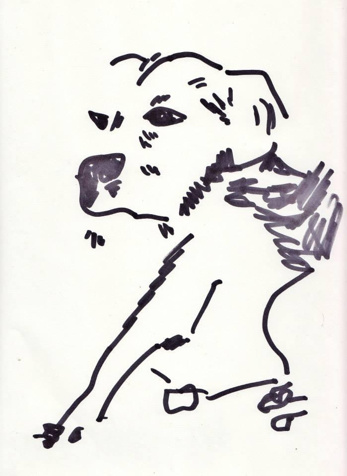 drawings (123)
