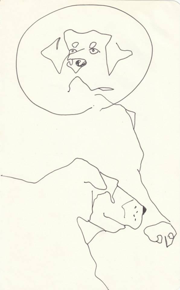 drawings (30)