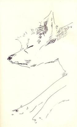 drawings (83)