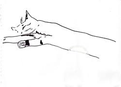drawings (120)