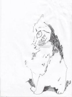 drawings (49)