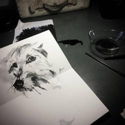 drawings (205)