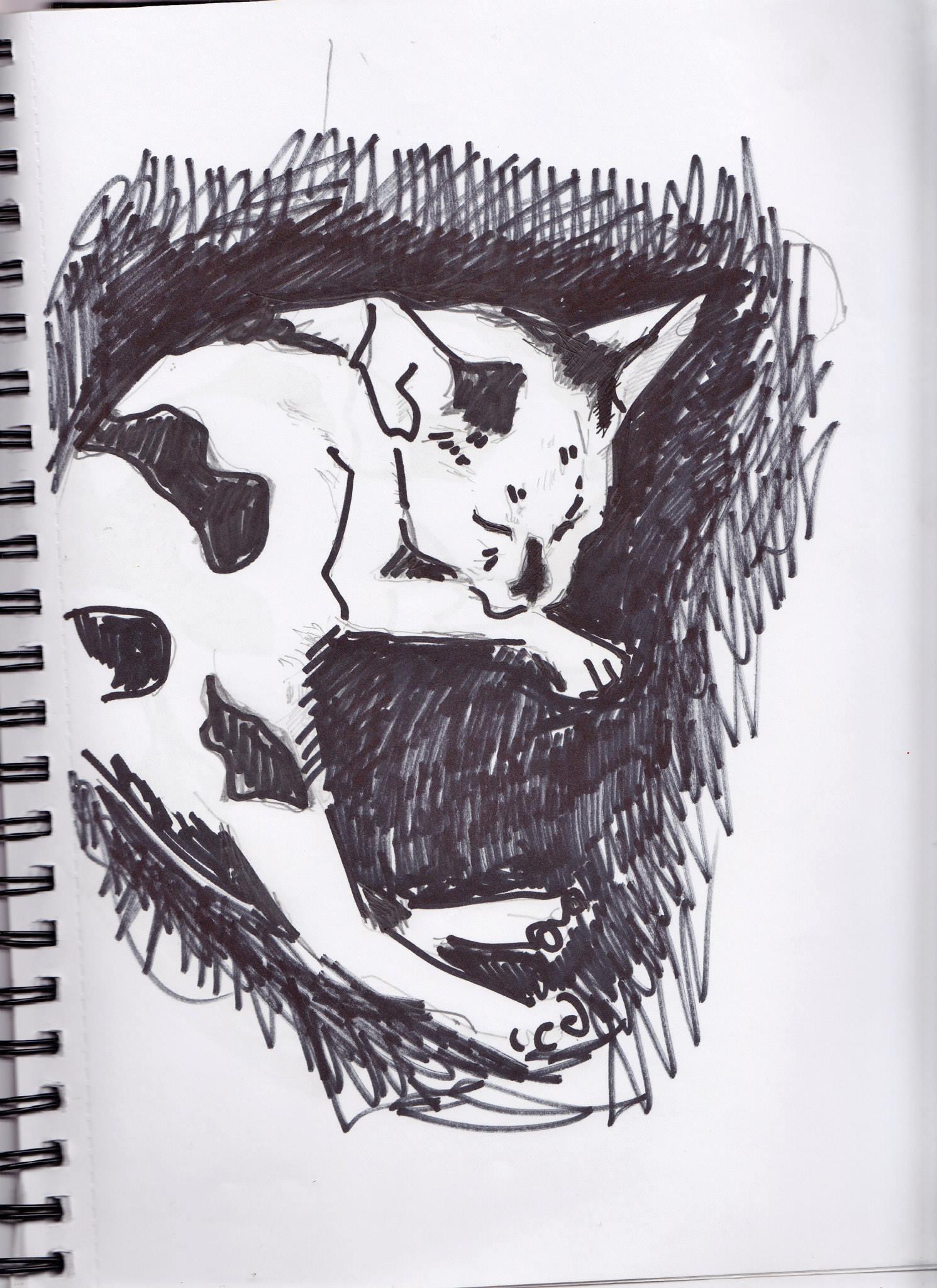 drawings (164)