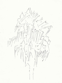 drawings (101)