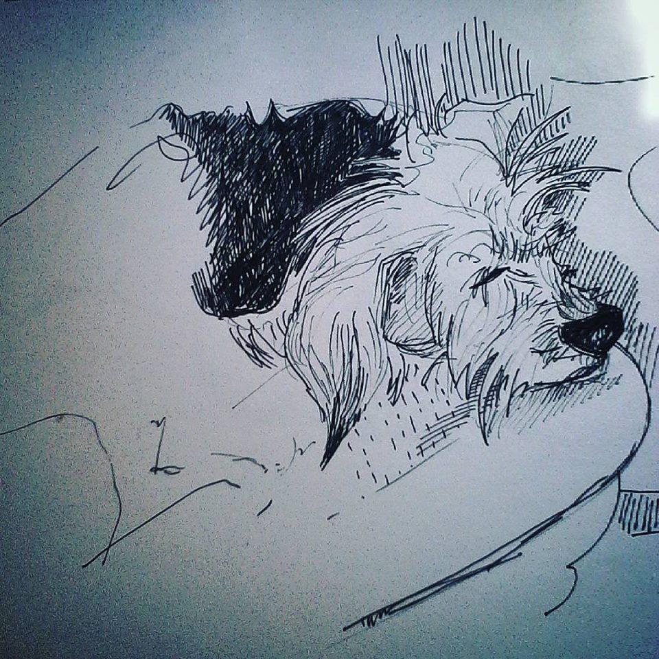 drawings (197)