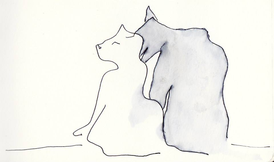 drawings (44)