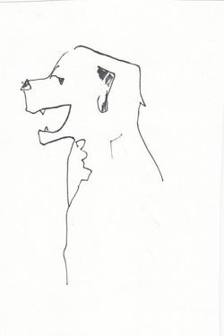 drawings (97)