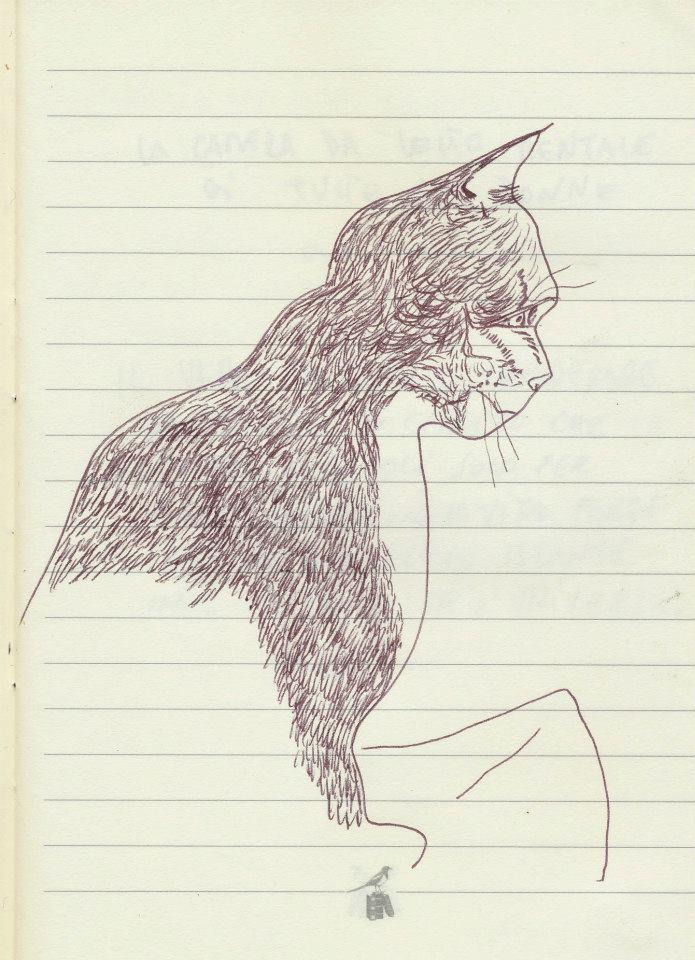 drawings (73)