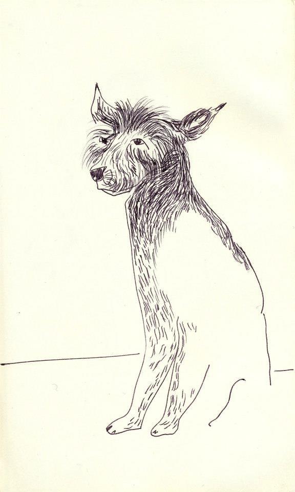 drawings (86)