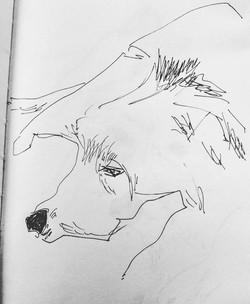 drawings (201)