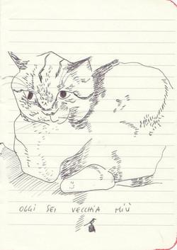 drawings (121)