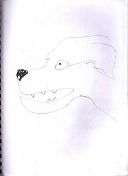 drawings (176)