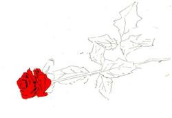 drawings (216)