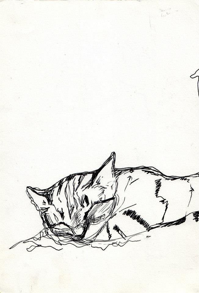 drawings (127)