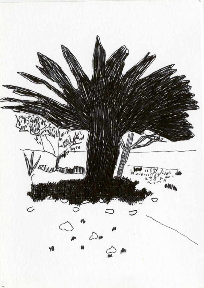 drawings (64)