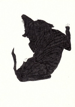 drawings (194)