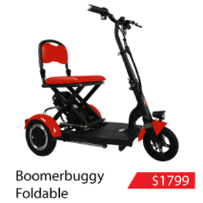 Boomerbuggy Foldable.png
