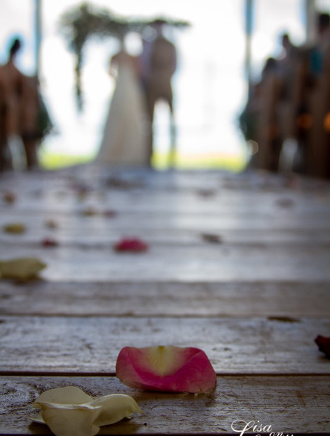 Roses at the Aisle