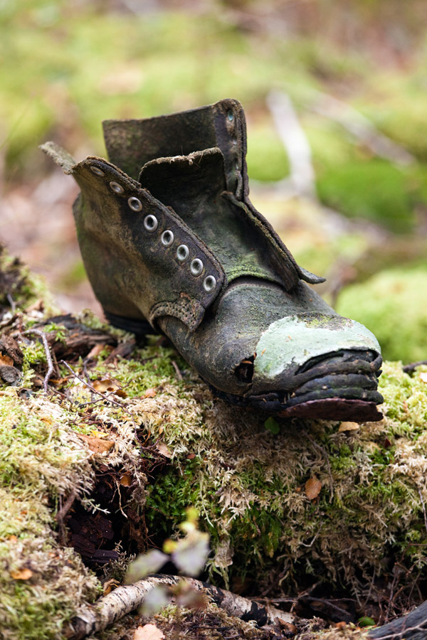 Old boot exudes rustic charm