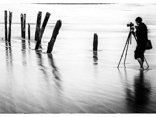 Melanchromy | St Clair Beach, Dunedin