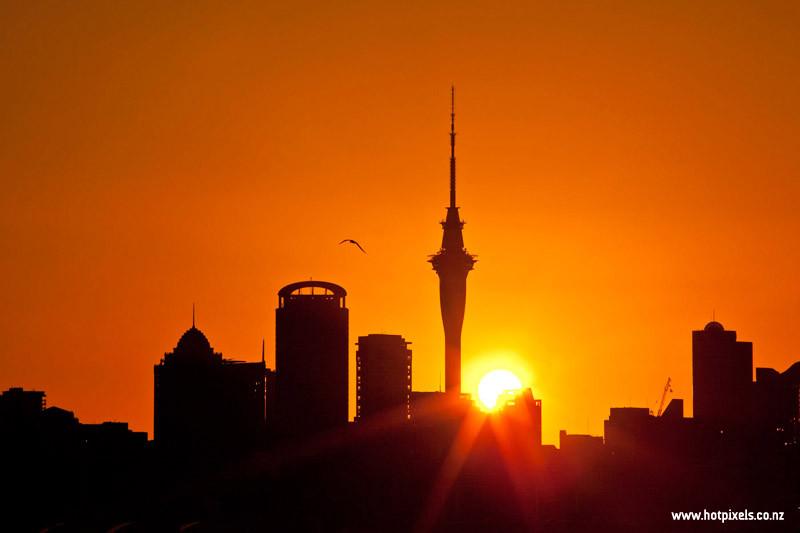 Auckland City skyline at sundown