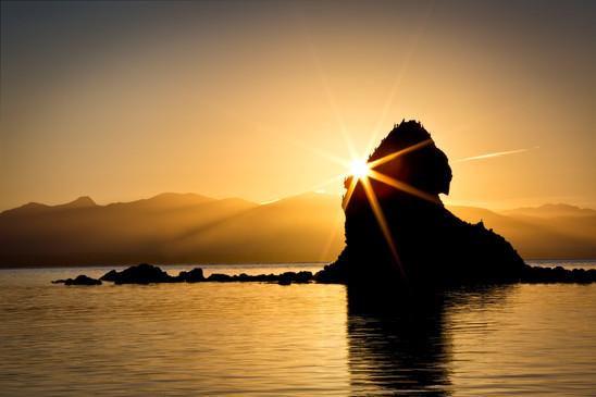 Sunstar on Fifeshire Rock, Nelson