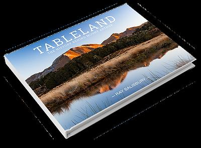 Tableland book cover