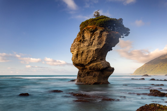 Maori Head Rock  at Motukiekie, West Coast