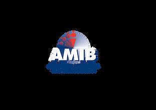 AMIB.png