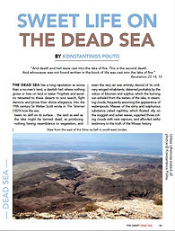 WreckwatchSpring2021-DeadSea.jpg