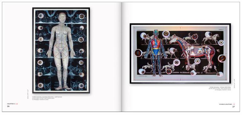Ch. 4 - Visual Anatomy