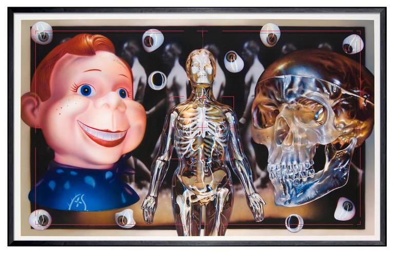 Visible Anatomy – Plastic Media Still Life, 2011