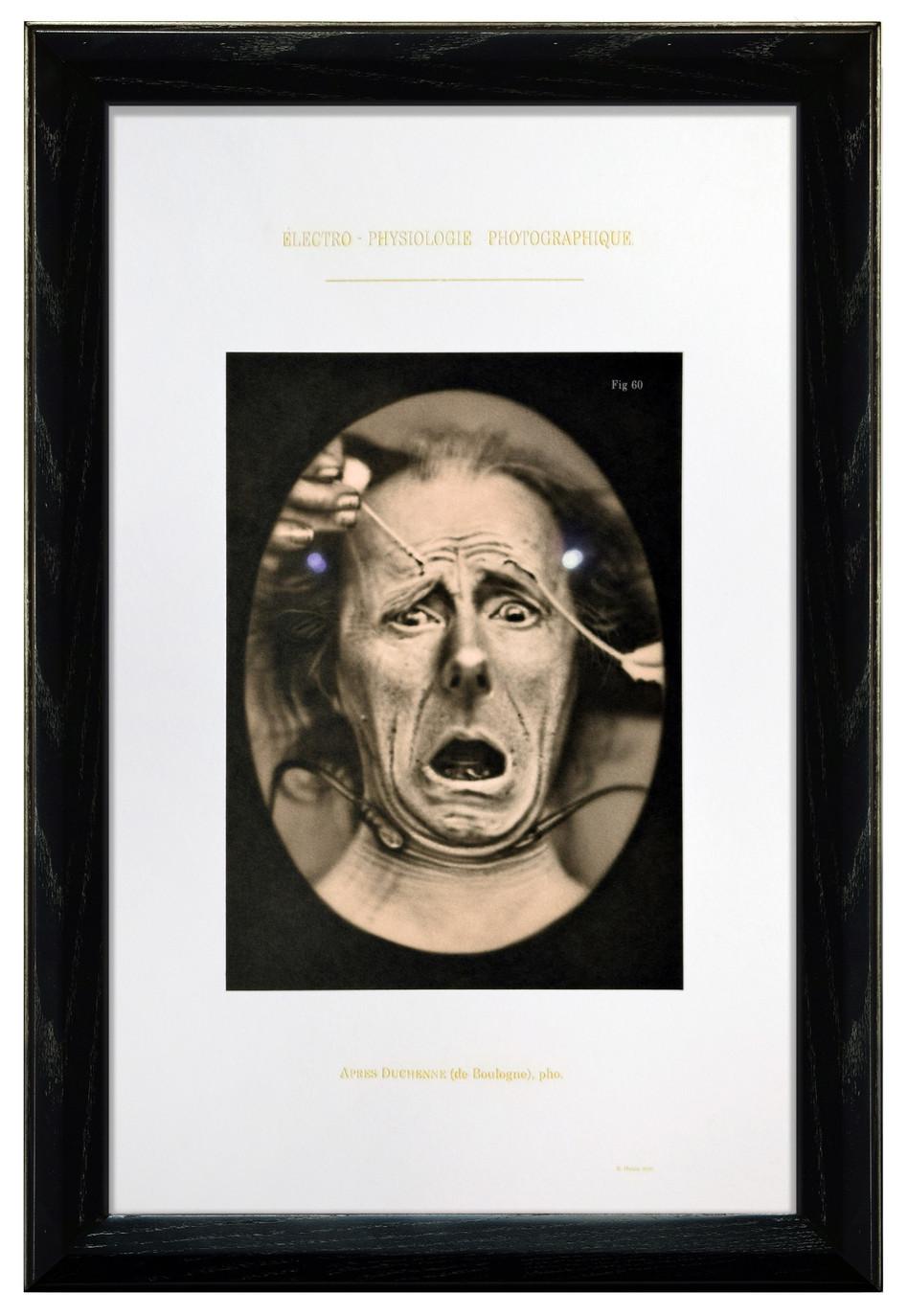 Figure 60: Fright, 2015