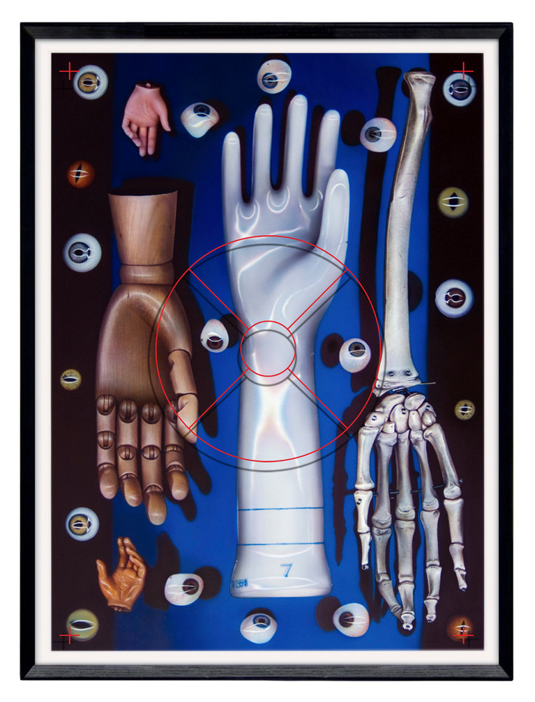 Visible Anatomy – Seeing Touch, 2010