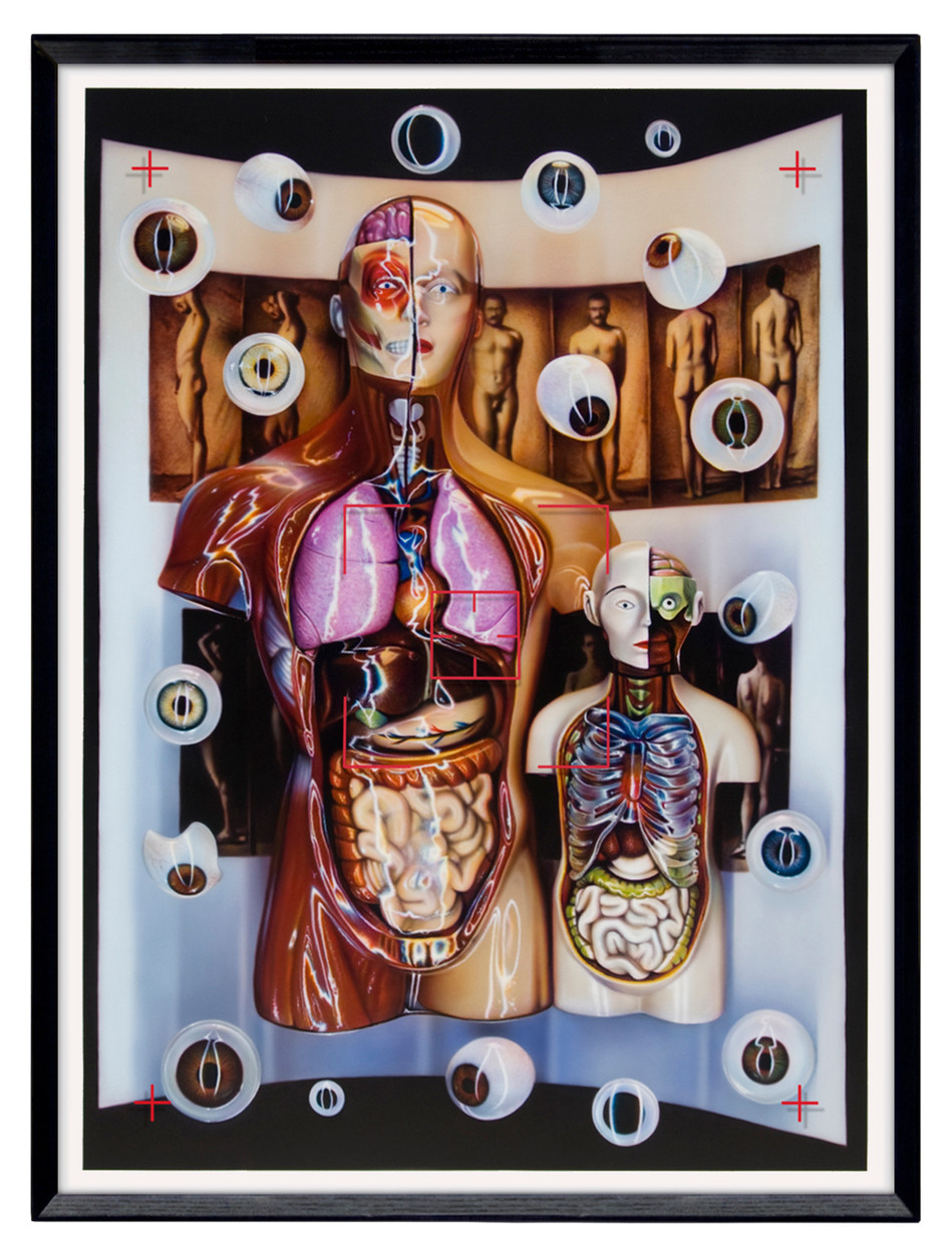 Visible Anatomy – Seeing Double, 2012