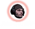 Logo4_ohneHintergrund(3).png