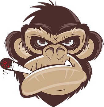 Monkeyboys_Logo.png