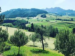 Éternelle Gruyère! Cerniat, Suisse