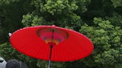 Ombrelle rouge, Tokyo, Japon