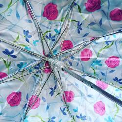 Parapluie fleuri, Paris, France.