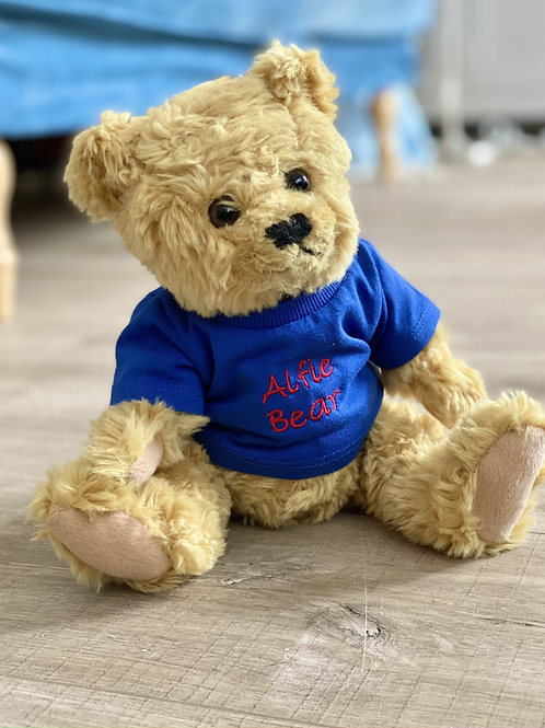 Classic golden brown teddy bear with t-shirt