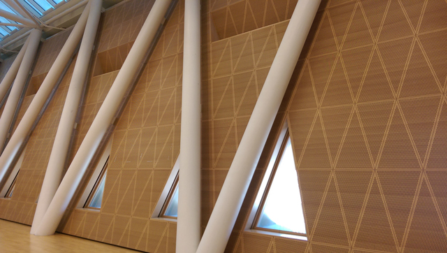 Masdar Sports Hall - Topakustik