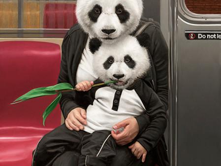 מתיו גרבלסקי לוקח את החיות לסיבוב ברכבת התחתית