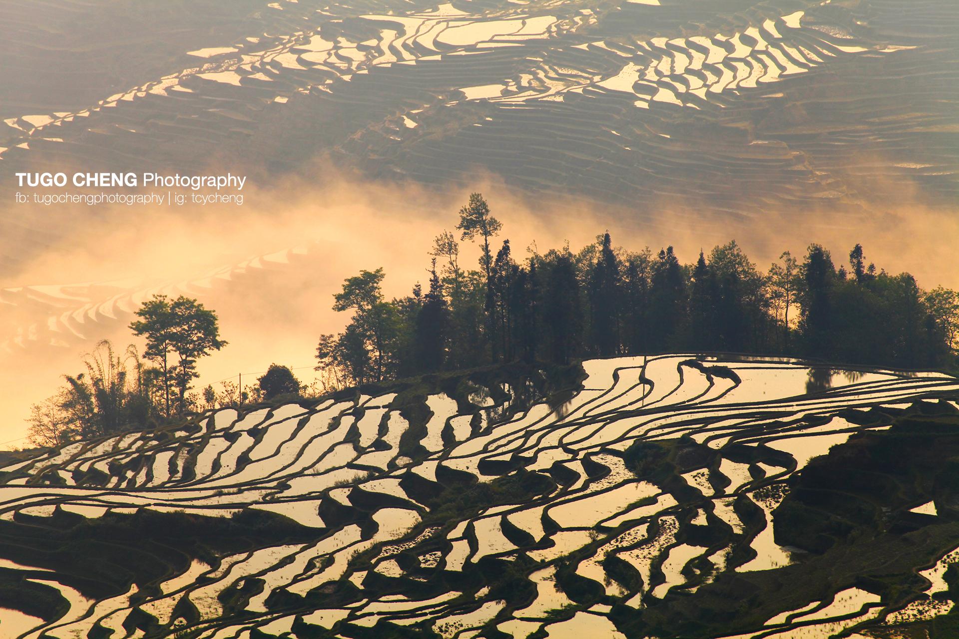 Yunnan #2